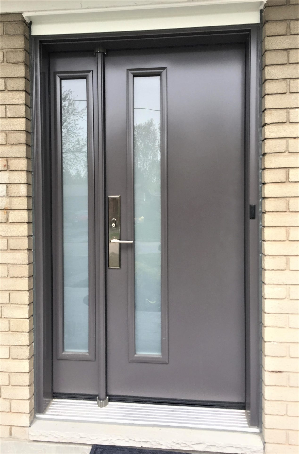 steel door system contemporary style with hinged sidelight