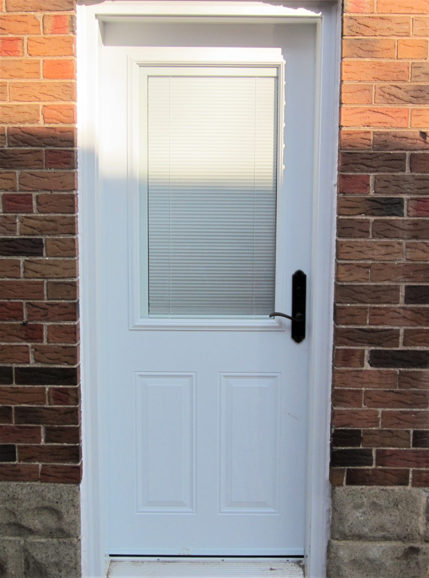 steel door system side door with miniblinds