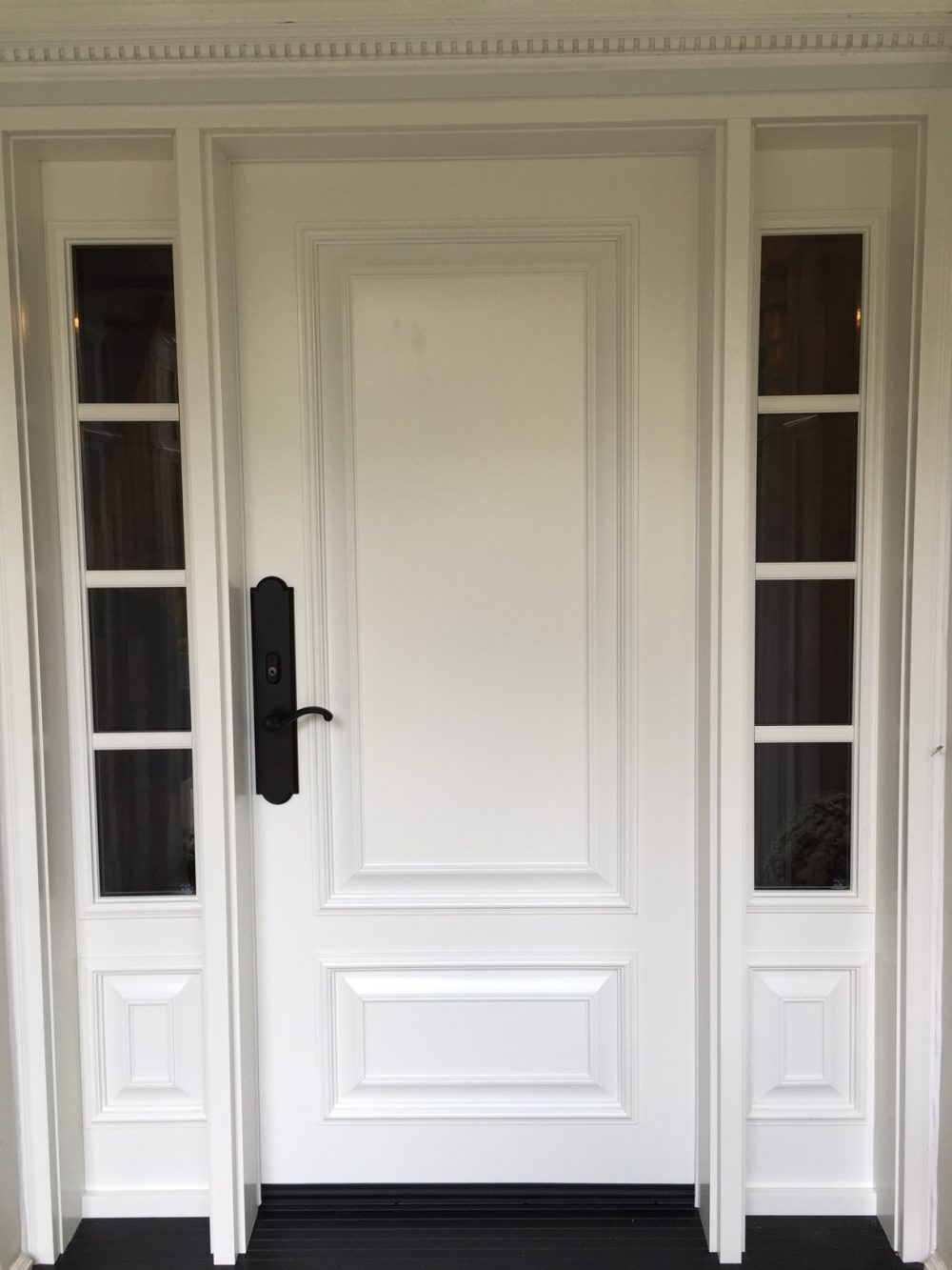 steel door system white with 2 sidelights and executive panels
